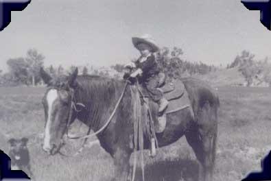 Witt's Custom Saddlery